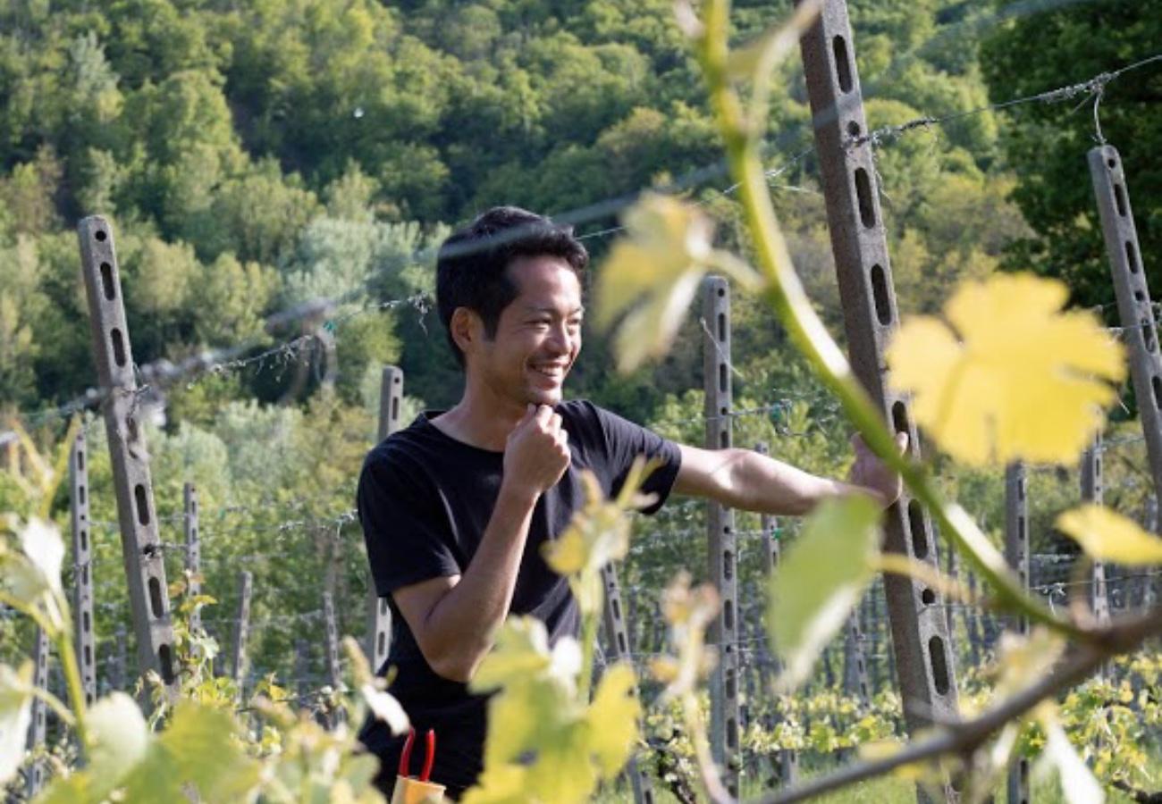 Metti un viticoltore di Tokyo in Val Trebbia e viene fuori il vino Gate